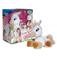 Candy the  Pony